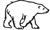 Polar Bear Image 1