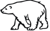 Polar Bear Image 2